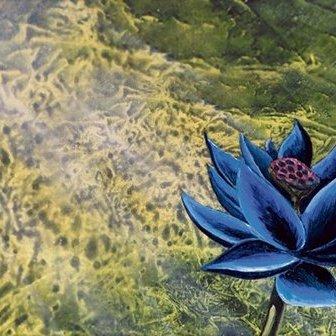 Black Lotus - WALLPAPERS   MAGIC: THE GATHERINGより