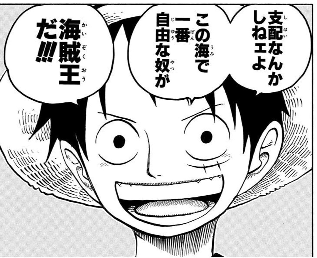 (『ONE PIECE』52巻 第507話より).jpg