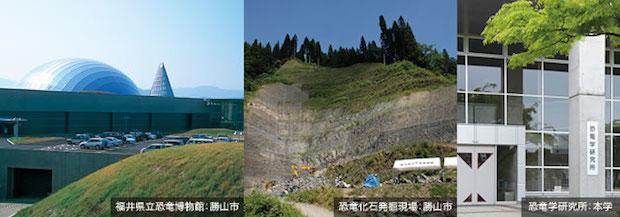 国際的快挙! 福井県産出の鳥類の卵化石が世界最古と判明