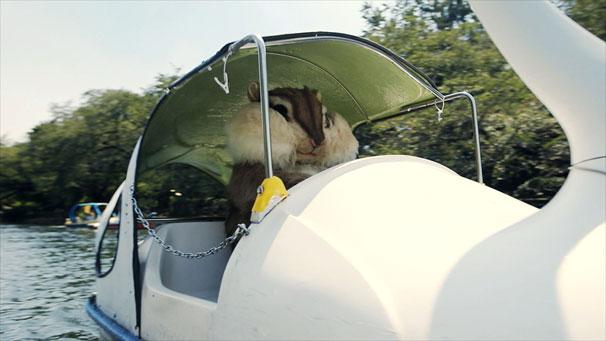 ちょリスがスワンボートに!