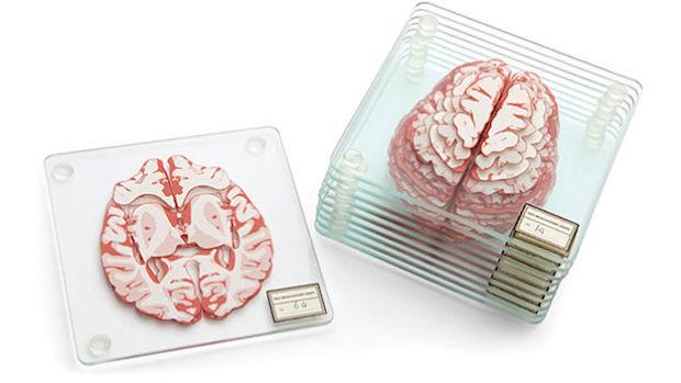 Brain Specimen Coasters/ThinkGeekより