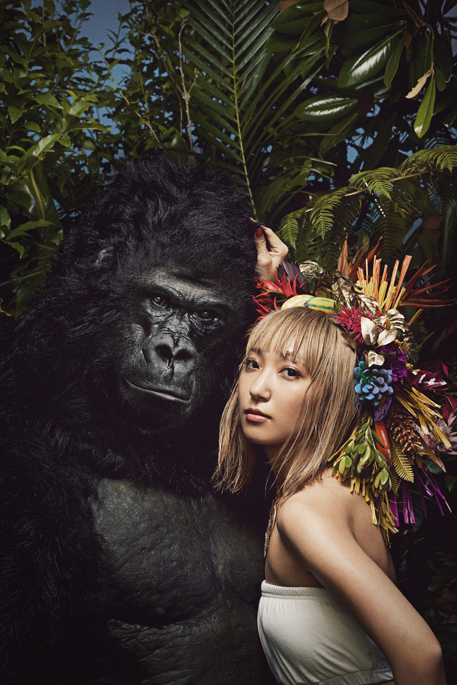 akko_gorilla