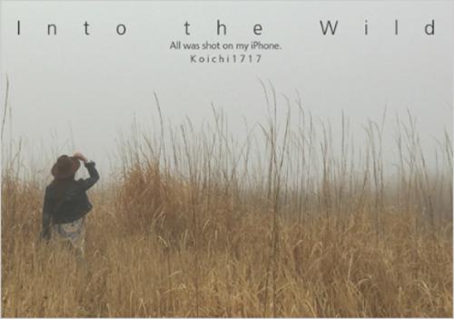 Koichi Miyaseさん『Into the Wild』/商品販売ページより