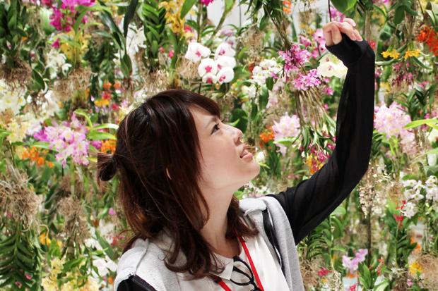 """花! 花! 花! 蘭で埋め尽くされた""""浮遊する庭園""""を体験したった"""