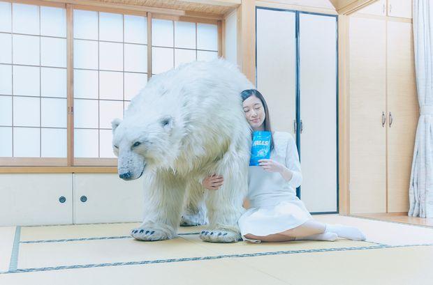 声優 南條愛乃がシロクマに癒される♡ HALLSがシロクマを無料宅配