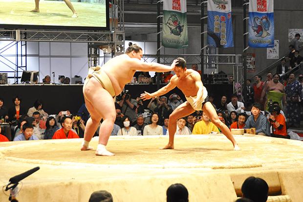 きんに君、きょうちゃん参戦! 裸一貫で挑んだ「大相撲 超会議場所」