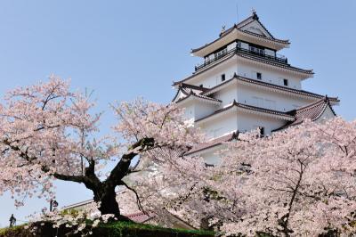 花見シーズンは終わらない! これからが見頃の『東日本桜スポット』特集が旅行のクチコミサイト「フォートラベル」にて公開