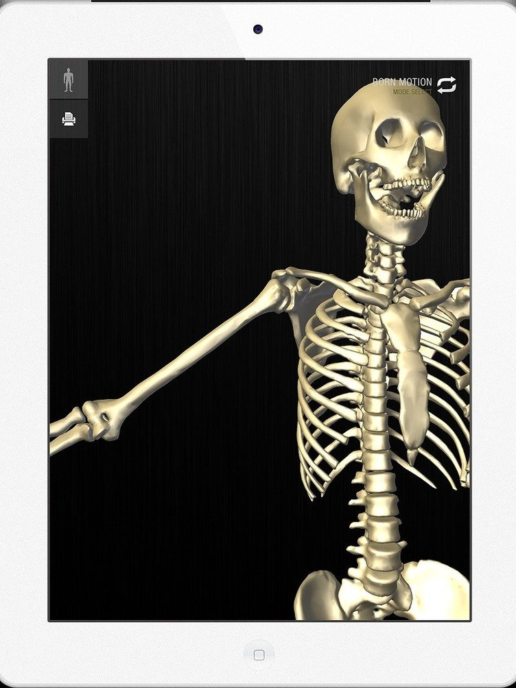 チームラボ開発の3D人体解剖アプリ「teamLabBody」が全世界同時発売