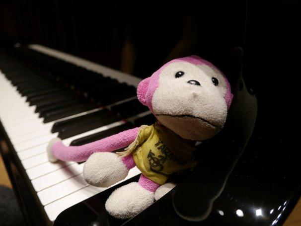 まらしぃさんの演奏動画に登場するサルのぬいぐるみ。曲によって登場の仕方が変わる。また、まらしぃさんが妹について言及する投稿者コメントも人気。