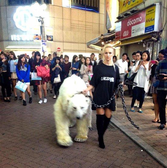渋谷に白熊が出現!  謎のロシア人集団・LALSHがポップすぎてヤバい