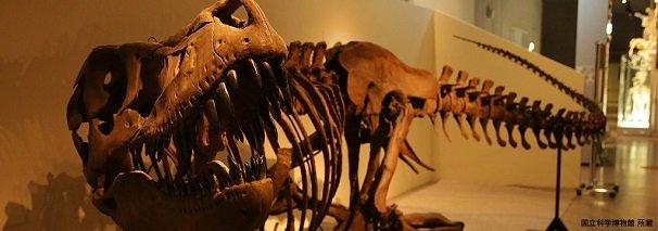 タルボザウルス