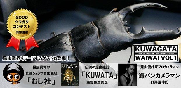 昆虫好きのための交流イベント!「クワガタワイワイ」で虫愛を語ろう