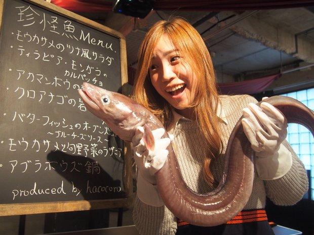「珍怪魚を食べてみよう」