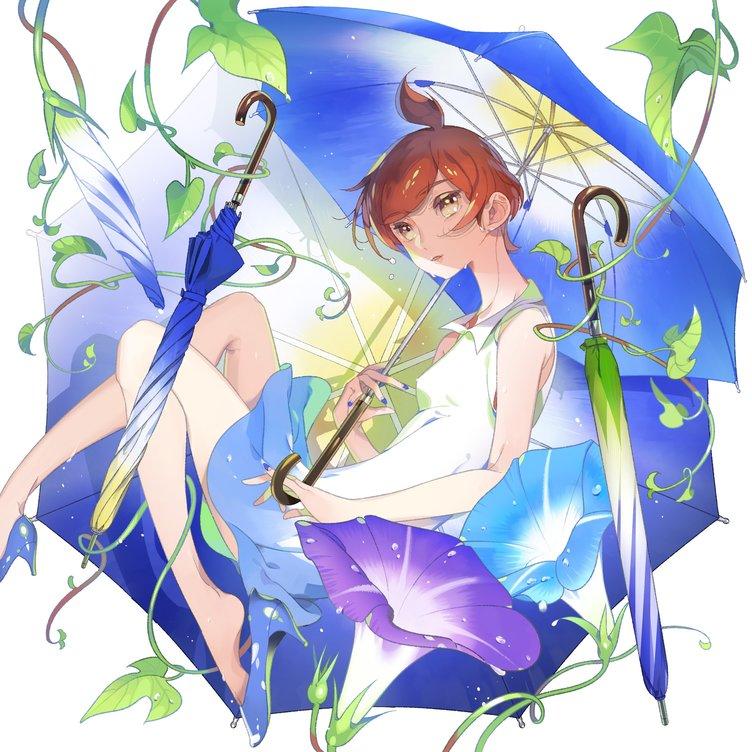 朝顔アンブレラが上品 イラストから生まれた花びらモチーフの傘 Kai