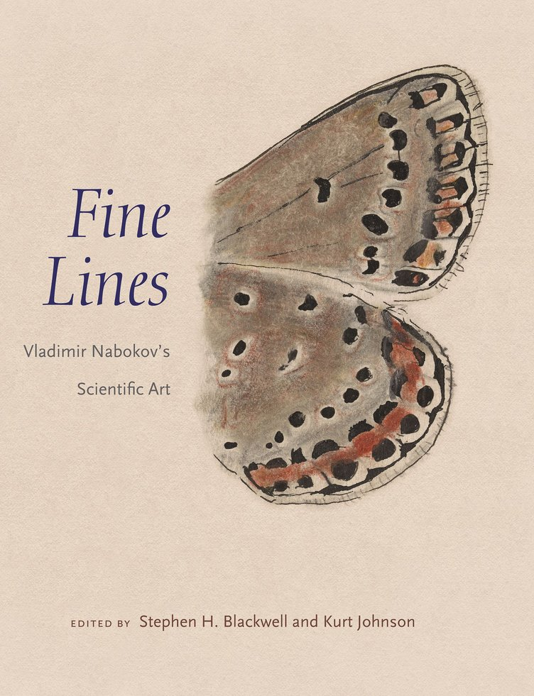 『ロリータ』ナボコフの描いた蝶のデッサン画集 蝶の研究家としての側面