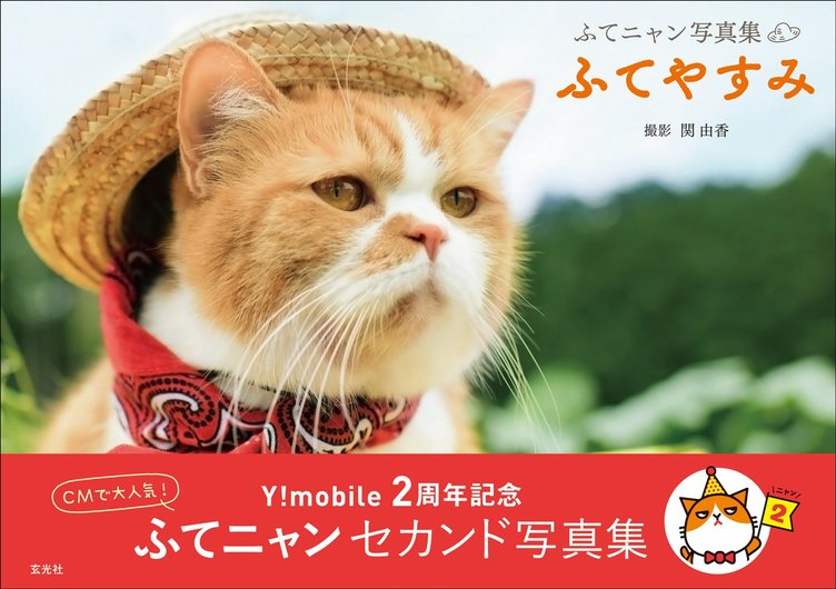 CMで大人気「ふてニャン」2nd写真集 この猫、ふてぶてしいけど愛くるしい!