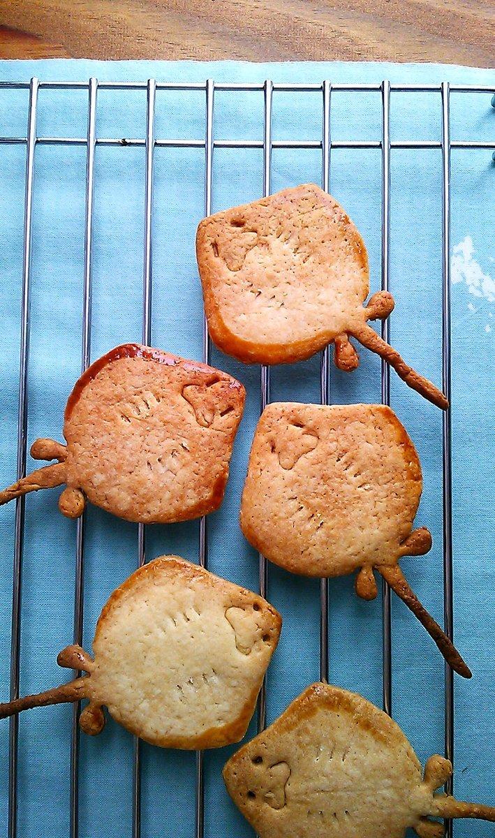 エイの裏側をクッキーで再現! にっこり笑顔がカワユス(´ω`)