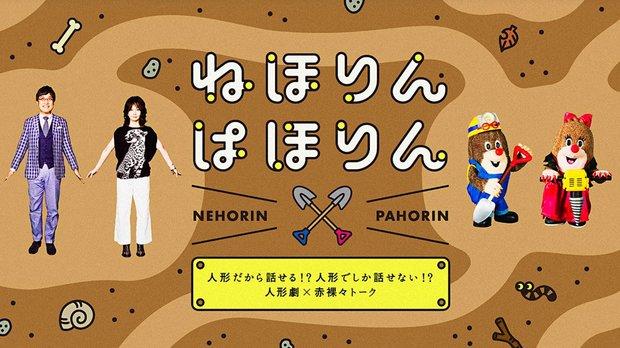 番組公式ホームページ「ねほりんぱほりん - NHK」より