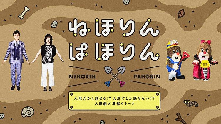 NHK『ねほりんぱほりん』地下アイドル特集 禁断の恋愛事情も匿名で激白