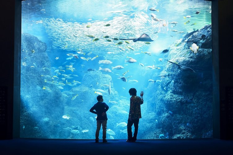 米津玄師、『海獣の子供』五十嵐大介と対談 本屋での「出会い」振り返る
