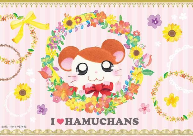 I LOVE HAMUCHANS