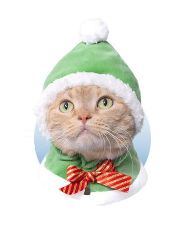 かぶりものホワイトクリスマス