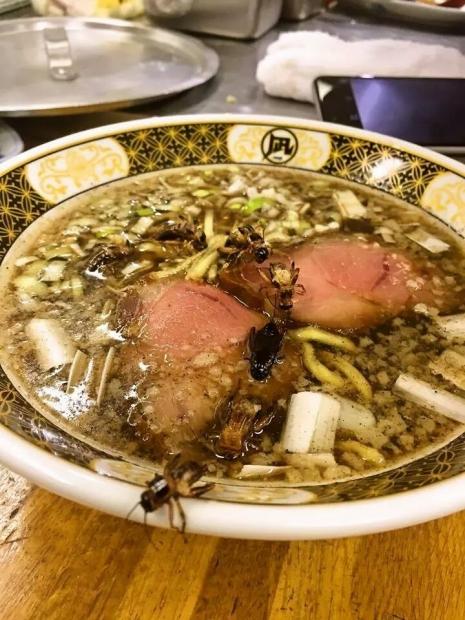 地球少年・篠原祐太のコオロギラーメン実食レポート3