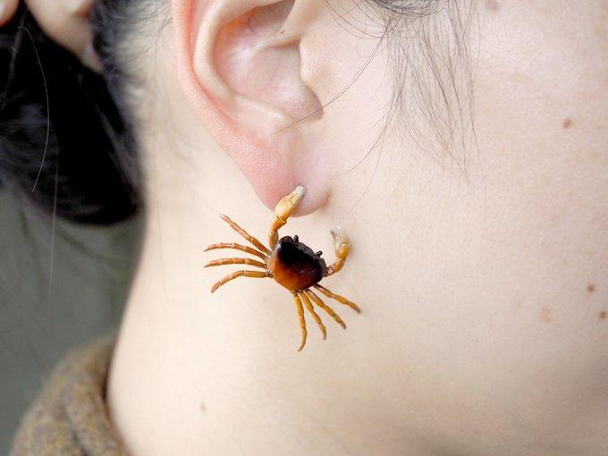 「耳、カニに挟まれてますよ」って言いたい! サワガニのピアスが痛そうで可愛い