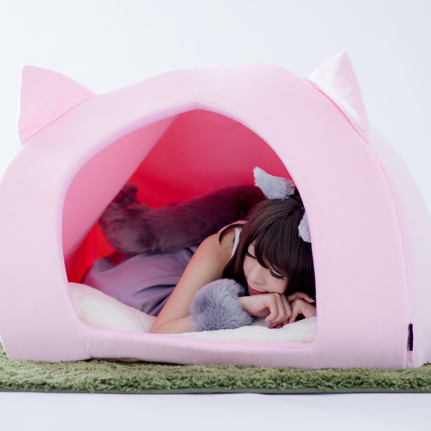 人間用ペットハウス(モデルは宮本彩希さん)だニャンニャンニャンニャン