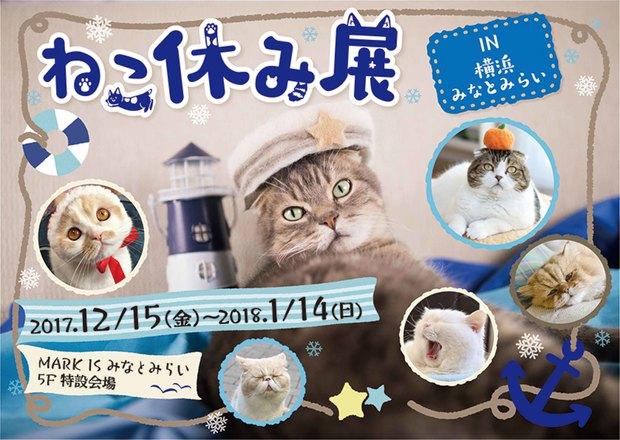 ねこ休み展in横浜