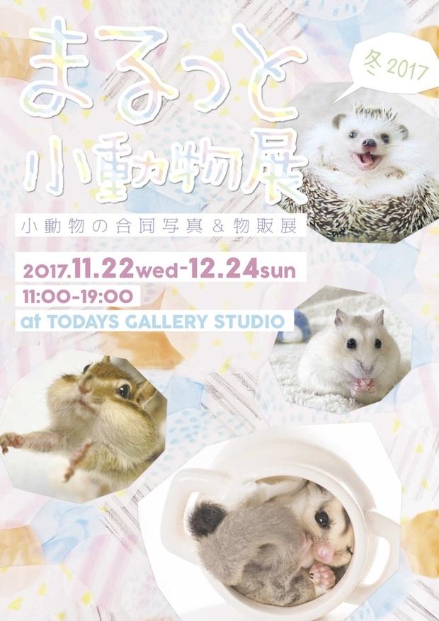 まるっと小動物展 冬 2017
