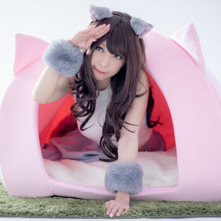 【人用】ネコになれるペットハウス誕生 モデルは人気レイヤー 宮本彩希