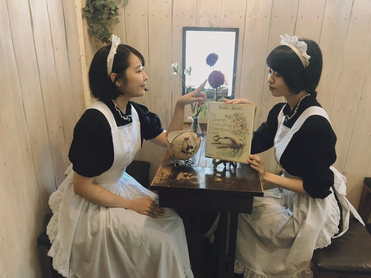 秋葉原のメイド喫茶「シャッツキステ」11月に閉店 14年の歴史に幕