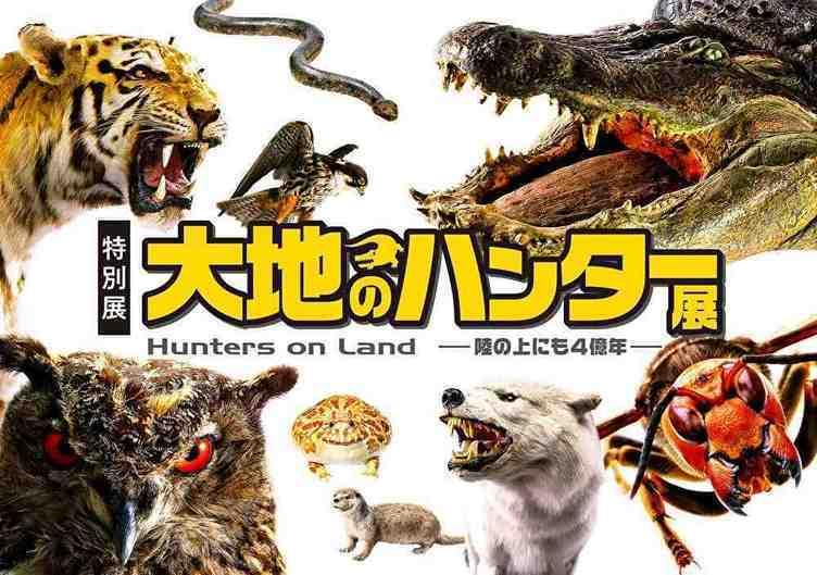 4億年の捕食者たちが大集合 国立科学博物館「大地のハンター展」開催