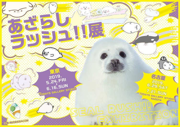 アザラシまみれの「あざらしラッシュ!!展」 東京と名古屋で開催