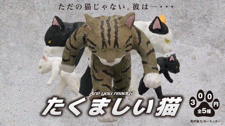猫フィギュアの概念覆す! 可愛いだけじゃない「たくましい猫」誕生