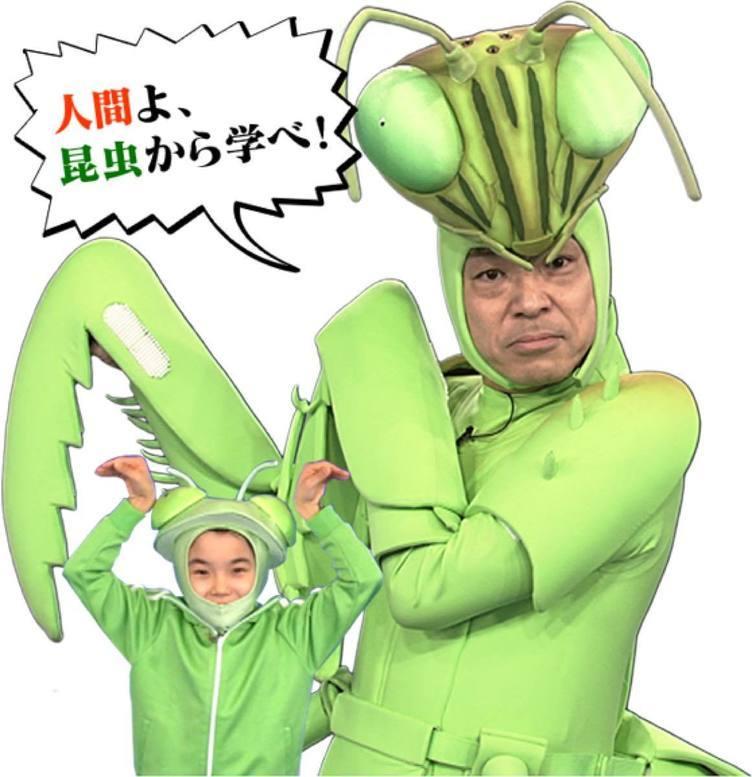 佐倉綾音、アリさんになる「香川照之の昆虫すごいぜ!」夏特番でナレーション