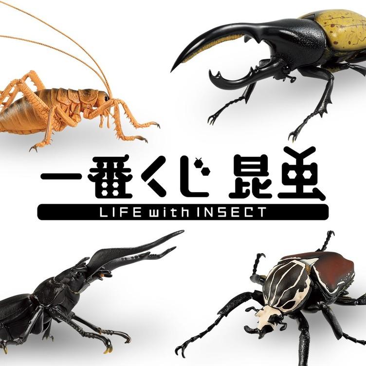 デカすぎ!世界の巨大昆虫が原寸フィギュアに 夏の虫取りは一番くじで