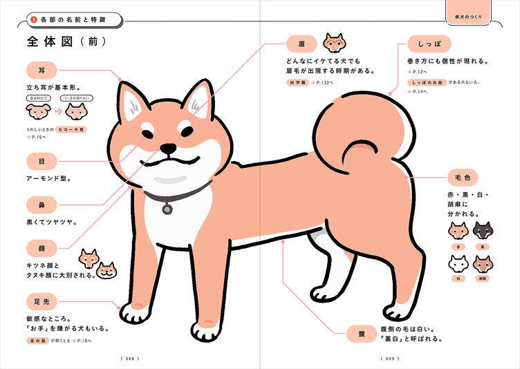 必読の書『柴犬のトリセツ』 柴歴24年のイラストレーターによるオール図解