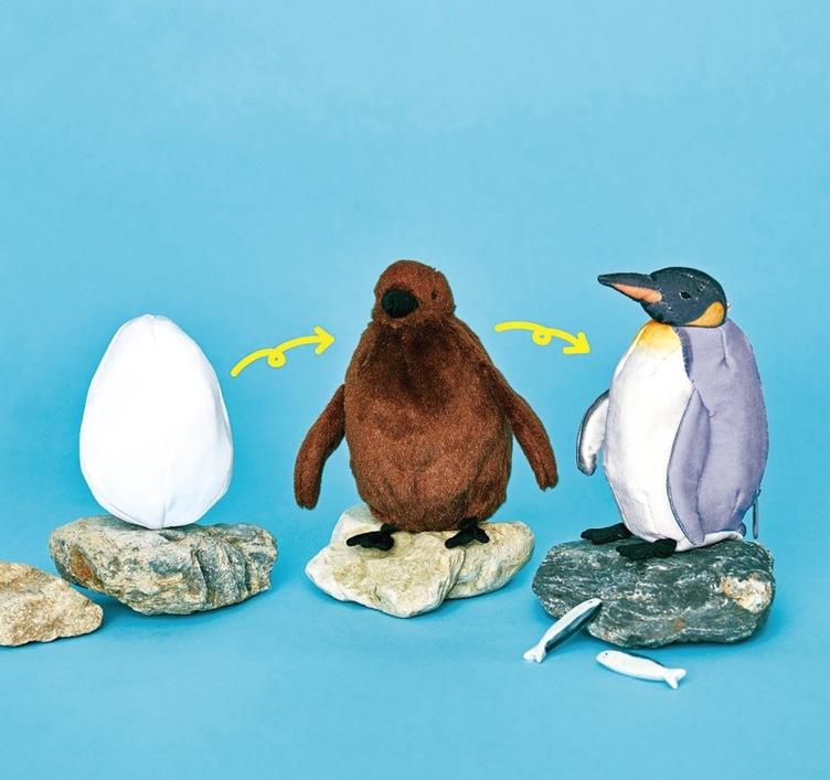 気分は親ペンギン 卵→ヒナ→成鳥と育つペンギンぬいぐるみが尊い