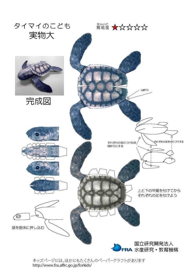 水産庁が無料公開している海の生き物ペーパークラフトの芸が細かい