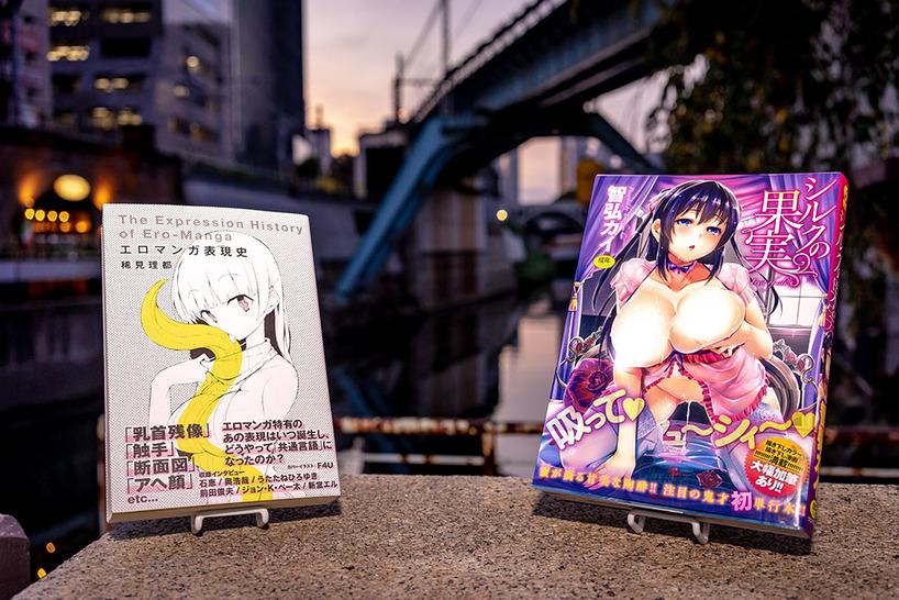 『エロマンガ表現史』/稀見理都(左)、『シルクの果実』/智弘カイ(右)